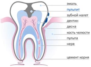 pulpit-zuba